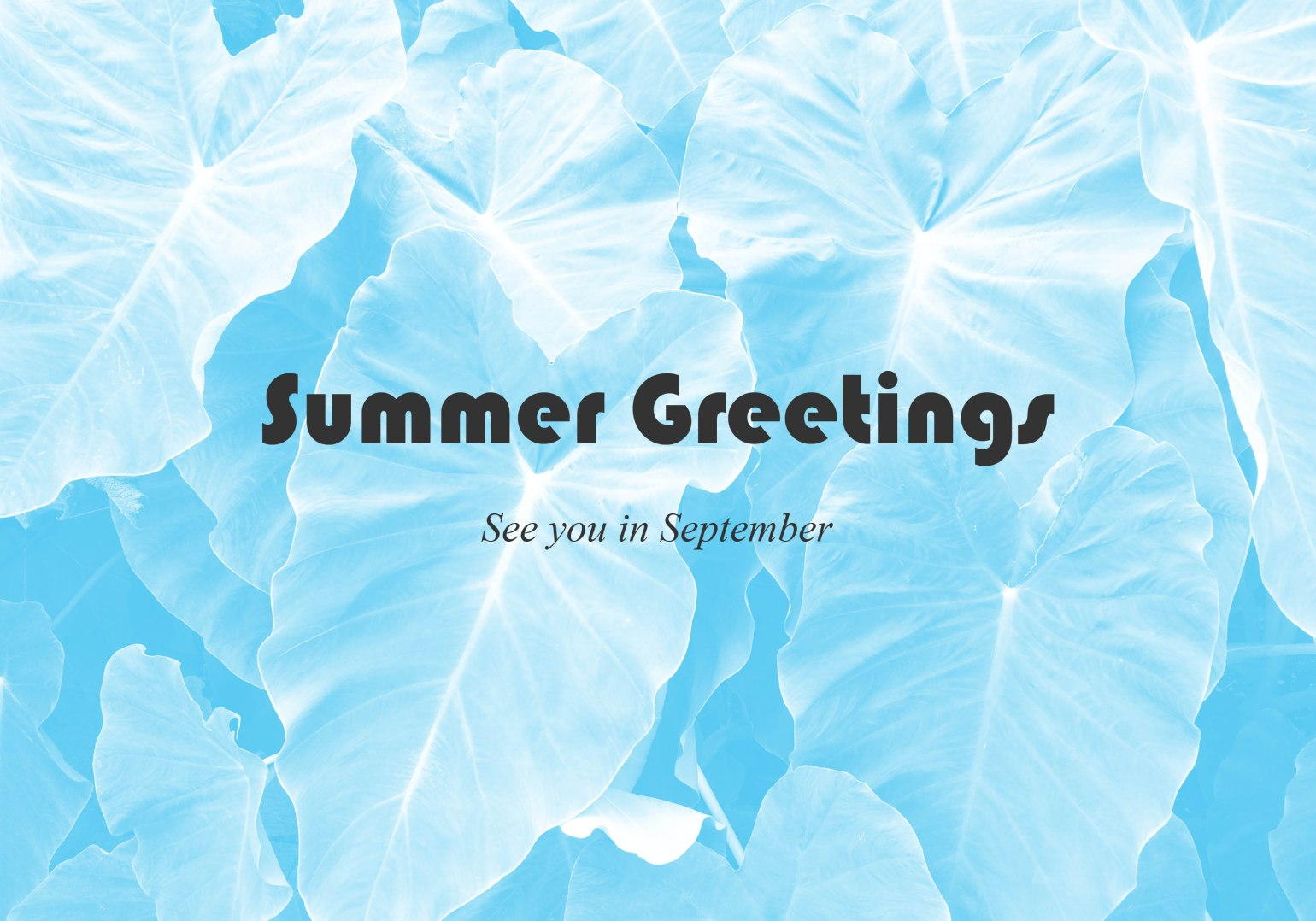Fisk Frisk Summer Greetings 2015