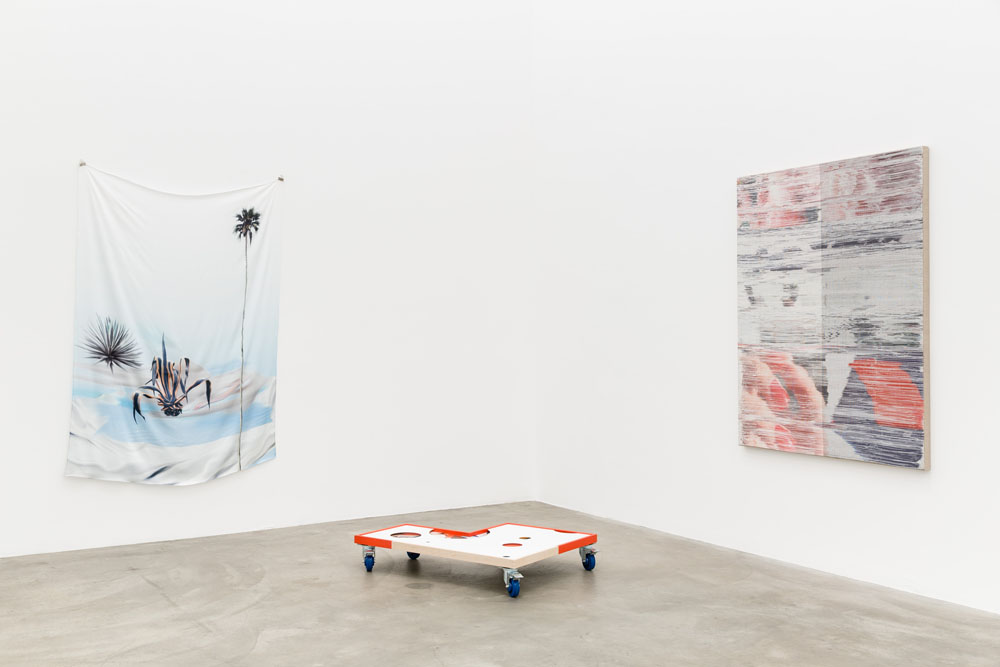 Catfish - Installation view 02