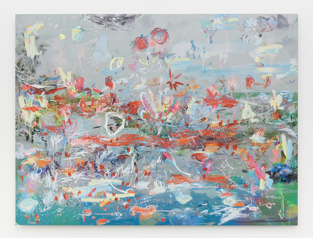 Petra Cortright - fishaquarium fish in australiaaquarium fish